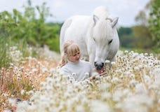 喂养一只白色舍特兰群岛小马的逗人喜爱的小女孩 库存照片