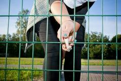 喂养动物 免版税库存图片