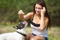 喂养她的牛头犬的年轻女性 库存照片