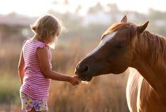 喂养她英俊的马的逗人喜爱的女孩 图库摄影