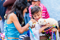 喂养小狗的两个青年女孩 免版税库存照片