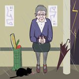 喂养小猫的老妇人