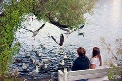 喂养海鸥的一对年轻夫妇的剪影在一个夏日,坐长凳 免版税库存图片