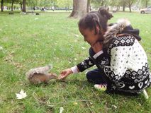喂养灰鼠的美丽的女孩在一个公园在伦敦 库存图片
