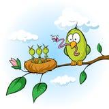 喂养饥饿的小鸡的鸟的春天例证 库存例证