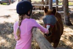 喂养马的女孩在大农场 图库摄影