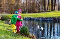 喂养鸭子的孩子在秋天公园 库存图片