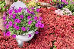 喇叭花花和装饰 库存图片