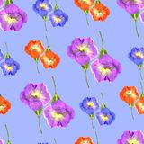 喇叭花 花无缝的样式纹理  花卉背景 库存图片