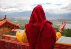 喇嘛后面 免版税库存图片