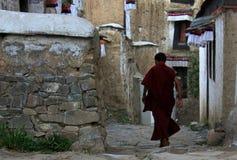 喇嘛生活 免版税库存图片
