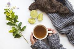 喉咙痛的草本健康饮料蜂蜜柠檬茶 图库摄影