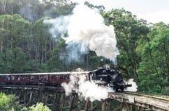喘气的比利蒸汽在Dandenong范围训练 免版税库存图片