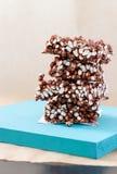从喘气的米的巧克力油炸马铃薯片在光b的蓝色立场 免版税库存图片