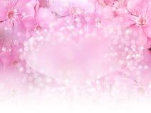 喜帖或华伦泰概念的桃红色花边界和心脏bokeh背景 库存图片