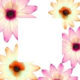 喜帖或邀请有抽象花卉背景婚姻的机构的 与滤网花的高雅样式 花卉illustra 库存图片