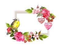 喜帖的葡萄酒花卉边界 花,玫瑰,莓果,鸟 救球日期文本的水彩框架 库存图片