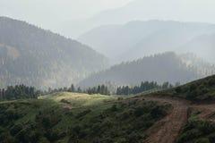 喜怒无常旅行的上升的山森林的阳光 库存照片