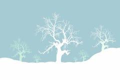 喜怒无常的冬天 库存照片