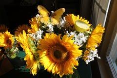 喜怒无常的向日葵花束 库存照片