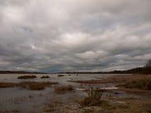 喜怒无常的天空阴云密布秋天冬天海湾水海洋树 免版税库存照片