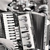 喜悦和秀丽在手风琴 免版税图库摄影