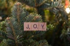 喜悦圣诞节装饰品 免版税库存图片