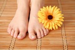 喜欢有花的美好的妇女腿 在白人妇女的背景美好的查出的行程 库存图片