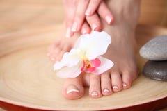 喜欢有花的美好的妇女腿 在白人妇女的背景美好的查出的行程 图库摄影