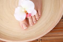 喜欢有花的美好的妇女腿 在白人妇女的背景美好的查出的行程 免版税库存照片