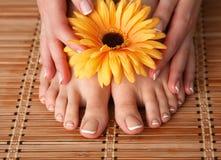 喜欢有花的美好的妇女腿 免版税库存照片