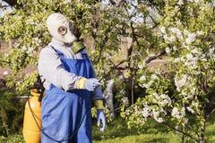喜欢果树,从事园艺 花匠洒树 免版税库存图片