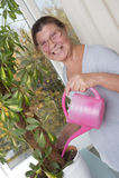 喜欢盆的植物的年长妇女 库存照片