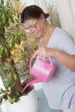 喜欢盆的植物的年长妇女 免版税库存照片