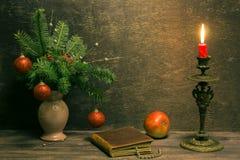 喜爱的圣诞节童话 图库摄影