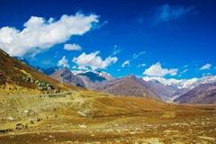 喜马拉雅山的看法manali的, himachal,印度 蓝天绿色牧场地 库存图片