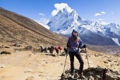 喜马拉雅山,尼泊尔cirka 2017年11月:theway的女性远足者对珠穆琅玛营地 萨加玛塔国家公园 图库摄影