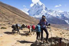 喜马拉雅山,尼泊尔cirka 2017年11月:theway的女性远足者对珠穆琅玛营地 萨加玛塔国家公园 库存图片