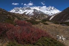 喜马拉雅山(在右边的洛子峰的)看法从Somare 免版税图库摄影