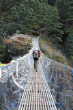 喜马拉雅桥梁 库存图片