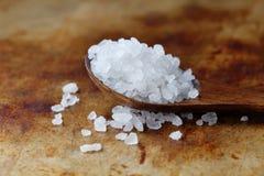 喜马拉雅Halite盐调味品宏指令视图 自然矿物调味料食品防腐剂,盐氯化钠白色 免版税库存照片