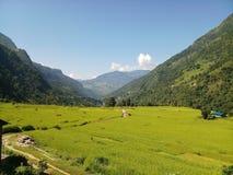 喜马拉雅Nepals的秀丽 库存照片