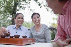 喝中国茶的小组成熟人民在公园 免版税图库摄影