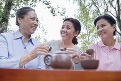 喝中国茶的小组成熟妇女在公园 免版税图库摄影