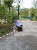 喝乌克兰围场的长凳 免版税图库摄影