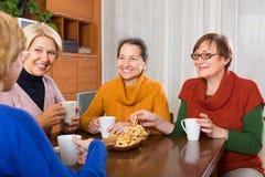 喝咖啡的资深女性朋友 库存照片