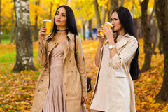 喝咖啡秋天公园的深色的女朋友 免版税图库摄影