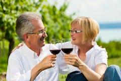 喝愉快的湖夏天酒的夫妇 免版税库存图片