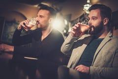 喝桶装啤酒的老朋友在酒吧柜台在客栈 免版税图库摄影
