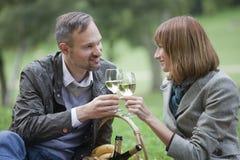 喝爱的香槟夫妇 库存图片